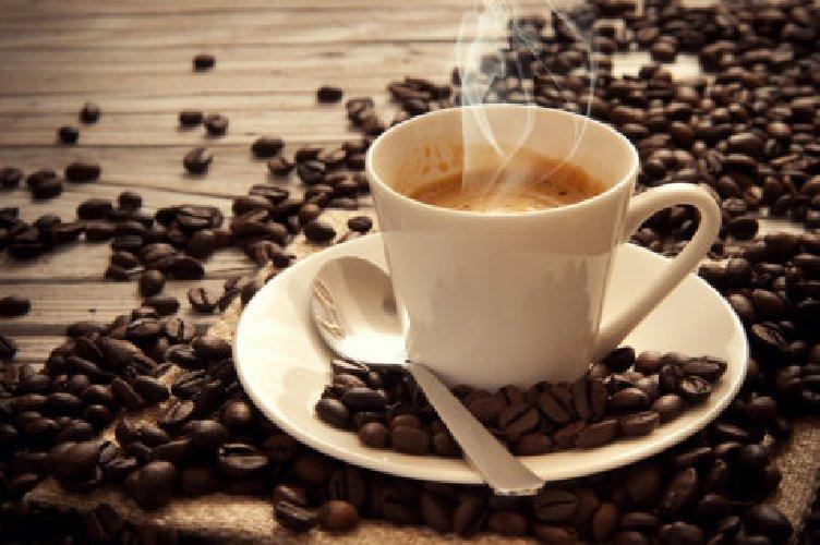 Risultati immagini per immagini coltivazioni caffeo