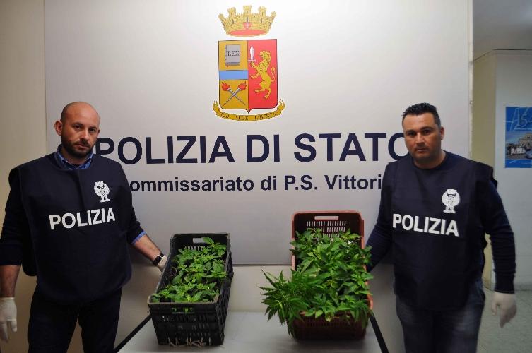 http://www.ragusanews.com//immagini_articoli/18-03-2017/ventenni-giovani-erba-arrestati-vittoria-500.jpg