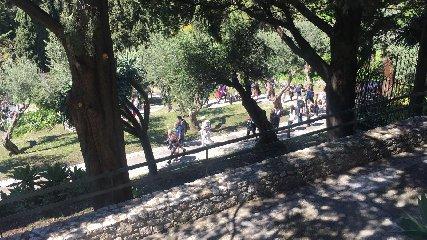 https://www.ragusanews.com//immagini_articoli/18-04-2019/1555599936-pasqua-e-pasquetta-che-spettacolo-i-siti-parco-di-naxos-taormina-2-240.jpg