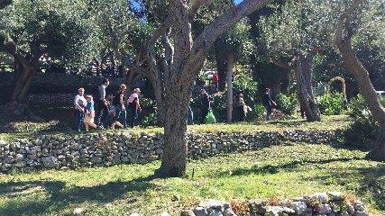 https://www.ragusanews.com//immagini_articoli/18-04-2019/1555599936-pasqua-e-pasquetta-che-spettacolo-i-siti-parco-di-naxos-taormina-3-240.jpg