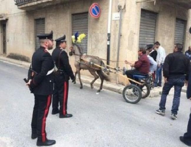 http://www.ragusanews.com//immagini_articoli/18-05-2016/lanciano-i-cavalli-al-galoppo-denunciati-87-fantini-500.jpg