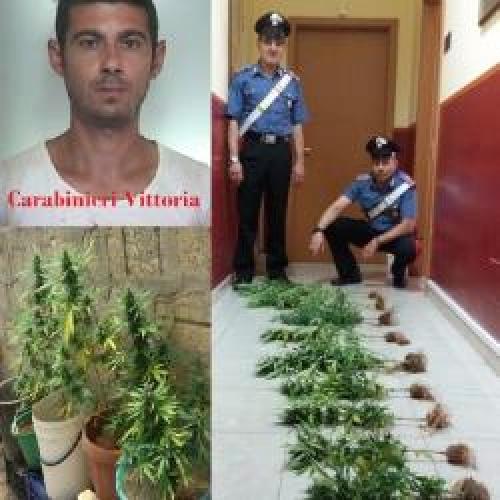 https://www.ragusanews.com//immagini_articoli/18-06-2015/placido-e-la-droga-sul-terrazzo-500.jpg