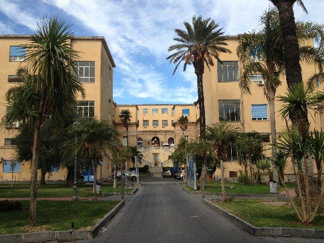 https://www.ragusanews.com//immagini_articoli/18-07-2018/catania-aggredisce-medici-ospedale-vittorio-emanuele-500.jpg
