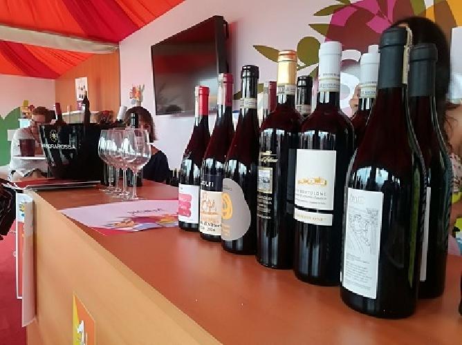 http://www.ragusanews.com//immagini_articoli/18-09-2017/cous-cous-fest-degustazioni-cerasuolo-vittoria-500.jpg