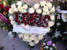 https://www.ragusanews.com//immagini_articoli/18-12-2014/il-cuore-di-fiori-di-veronica-al-funerale-di-loris-100.jpg