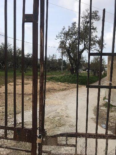 https://www.ragusanews.com//immagini_articoli/18-12-2019/1576677515-incendio-al-cimitero-di-comiso-1-500.jpg