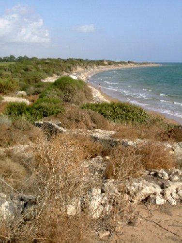 https://www.ragusanews.com//immagini_articoli/19-02-2020/finanziato-progetto-per-il-recupero-dune-fiume-irminio-500.jpg