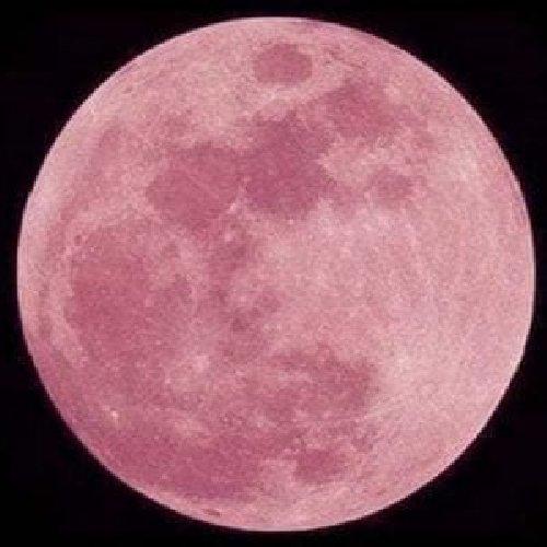 https://www.ragusanews.com//immagini_articoli/19-04-2019/stasera-la-luna-rosa-mi-parla-di-te-500.jpg