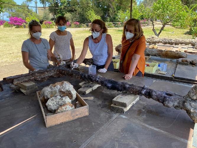 https://www.ragusanews.com//immagini_articoli/19-06-2021/archeologia-in-sicilia-esposte-tre-ancore-recuperate-nella-baia-di-naxos-500.jpg