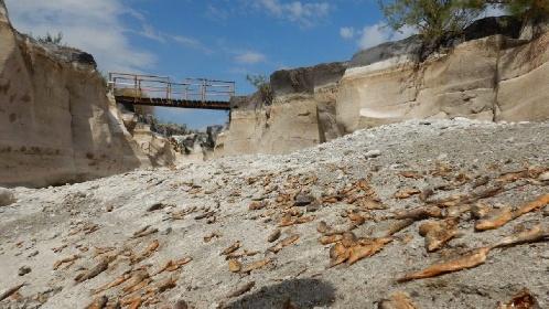 https://www.ragusanews.com//immagini_articoli/19-07-2021/c-era-una-volta-l-alcantara-il-fiume-che-muore-non-solo-di-siccita-foto-280.jpg
