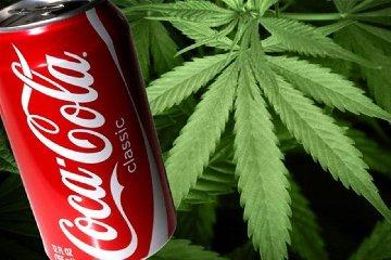 https://www.ragusanews.com//immagini_articoli/19-09-2018/coca-cola-vuole-lanciare-bibita-cannabis-240.jpg
