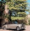 https://www.ragusanews.com//immagini_articoli/19-09-2019/i-savoia-vendono-all-asta-la-rolls-royce-100.png