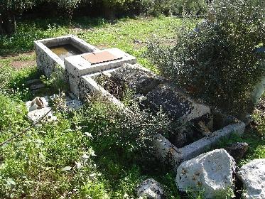 https://www.ragusanews.com//immagini_articoli/19-09-2021/1632074533-giornata-della-speleologia-a-cava-cugno-2-280.jpg