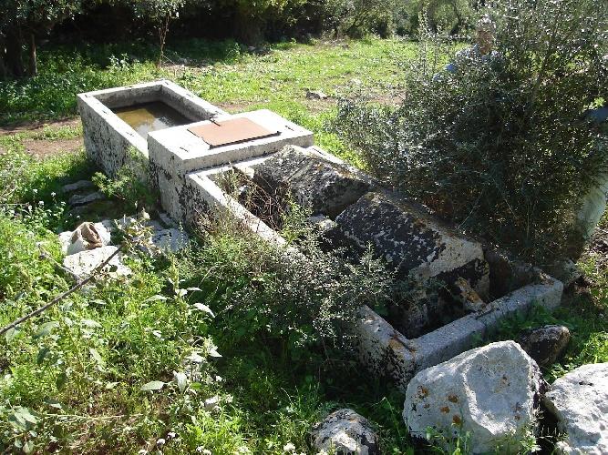 https://www.ragusanews.com//immagini_articoli/19-09-2021/1632074533-giornata-della-speleologia-a-cava-cugno-2-500.jpg