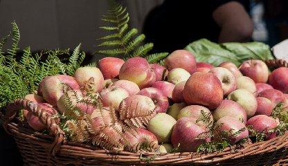 https://www.ragusanews.com//immagini_articoli/19-10-2018/mercatini-dautunno-prelibatezze-delletna-street-food-240.jpg