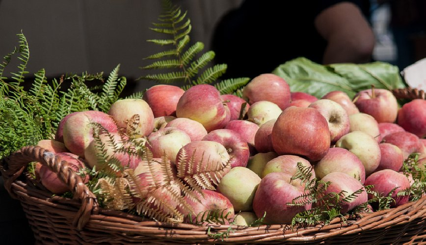 https://www.ragusanews.com//immagini_articoli/19-10-2018/mercatini-dautunno-prelibatezze-delletna-street-food-500.jpg