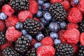 https://www.ragusanews.com//immagini_articoli/19-11-2019/dieta-dimagrire-con-i-frutti-di-bosco-240.jpg