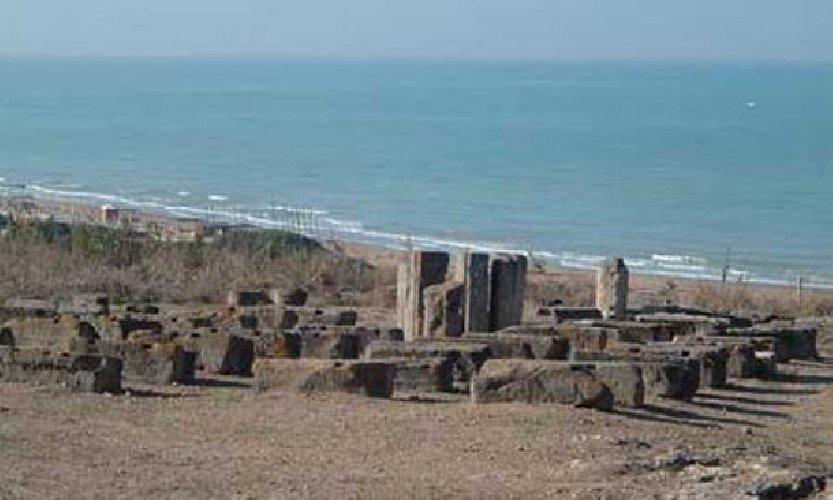 https://www.ragusanews.com//immagini_articoli/20-03-2018/camarina-caucana-ricerche-archeologia-siciliana-libro-500.jpg