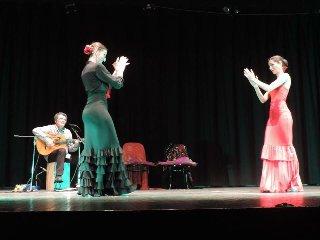 https://www.ragusanews.com//immagini_articoli/20-05-2018/sold-flamenco-ragusa-240.jpg