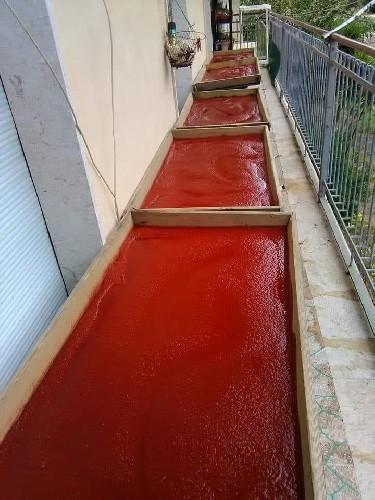 https://www.ragusanews.com//immagini_articoli/20-06-2020/1592604227-u-stattu-l-arte-del-fare-il-concentrato-di-pomodoro-in-sicilia-2-500.jpg