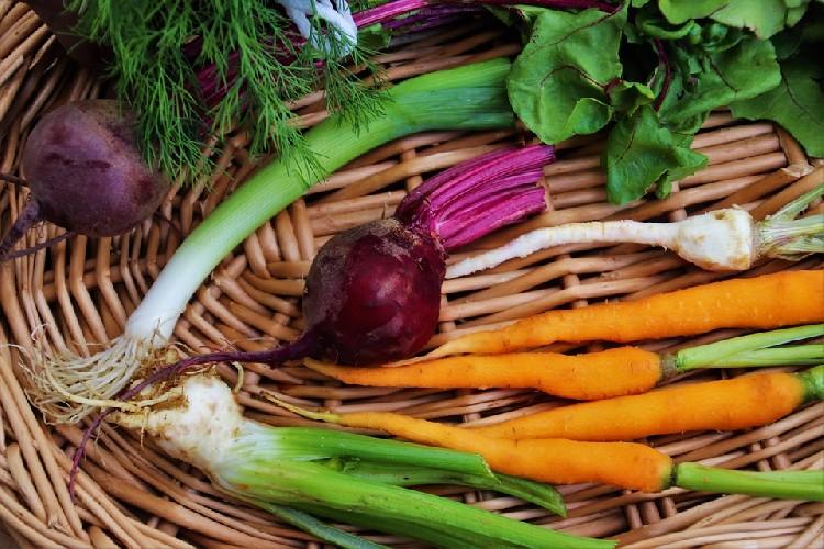 https://www.ragusanews.com//immagini_articoli/20-07-2020/dimagrire-velocemente-con-una-dieta-equilibrata-500.jpg