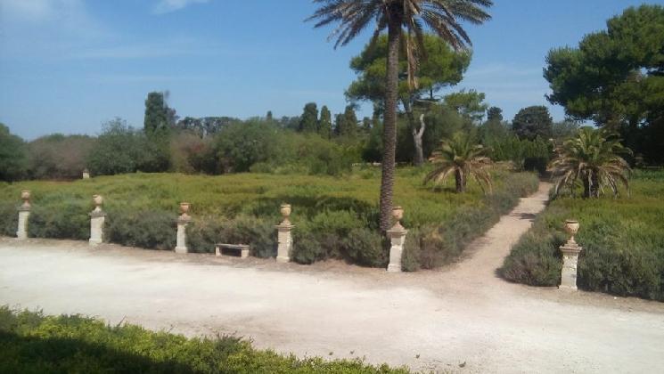 https://www.ragusanews.com//immagini_articoli/20-08-2016/l-incuria-del-giardino-del-castello-di-donnafugata-420.jpg