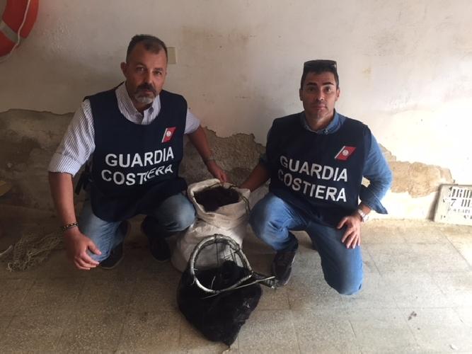 https://www.ragusanews.com//immagini_articoli/20-10-2017/ricci-pescati-illegalmente-multe-mila-euro-500.jpg