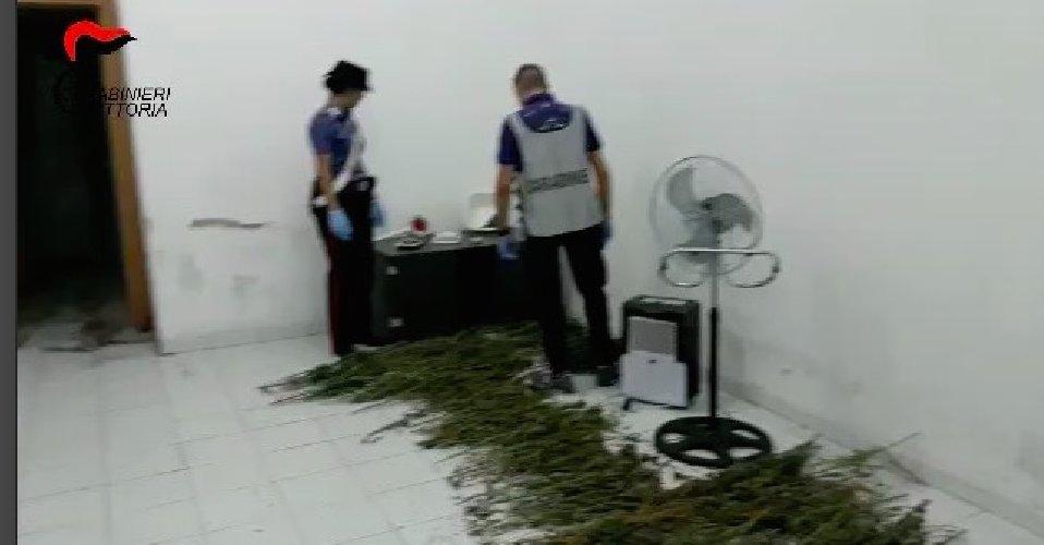 https://www.ragusanews.com//immagini_articoli/20-10-2018/ambulante-comiso-cinque-chili-droga-casa-500.jpg