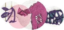 http://www.ragusanews.com//immagini_articoli/20-12-2015/a-natale-regala-i-gioielli-laserati-di-saroj-100.jpg