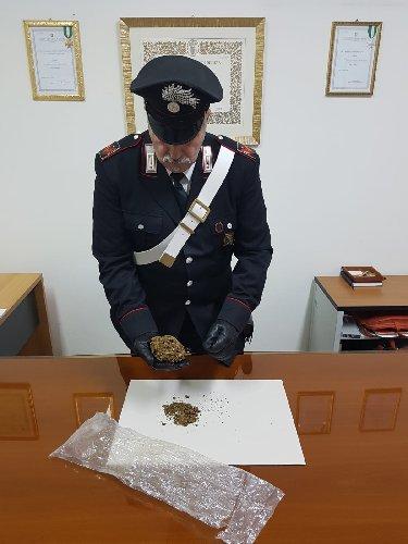 https://www.ragusanews.com//immagini_articoli/21-01-2019/marijuana-casa-arrestato-operaio-pozzallese-27enne-500.jpg