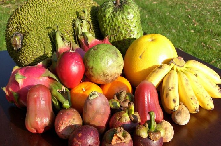 https://www.ragusanews.com//immagini_articoli/21-03-2019/perdi-peso-con-frutta-esotica-dieta-settimanale-500.jpg