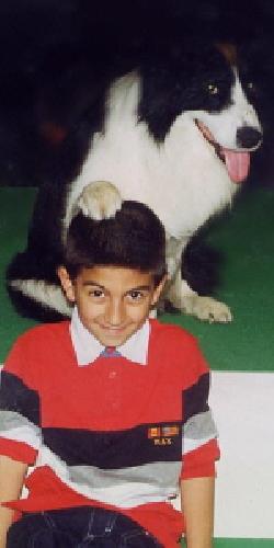 https://www.ragusanews.com//immagini_articoli/21-05-2009/emporio-degli-animali-il-piu-grande-negozio-di-animali-del-sud-italia-500.jpg
