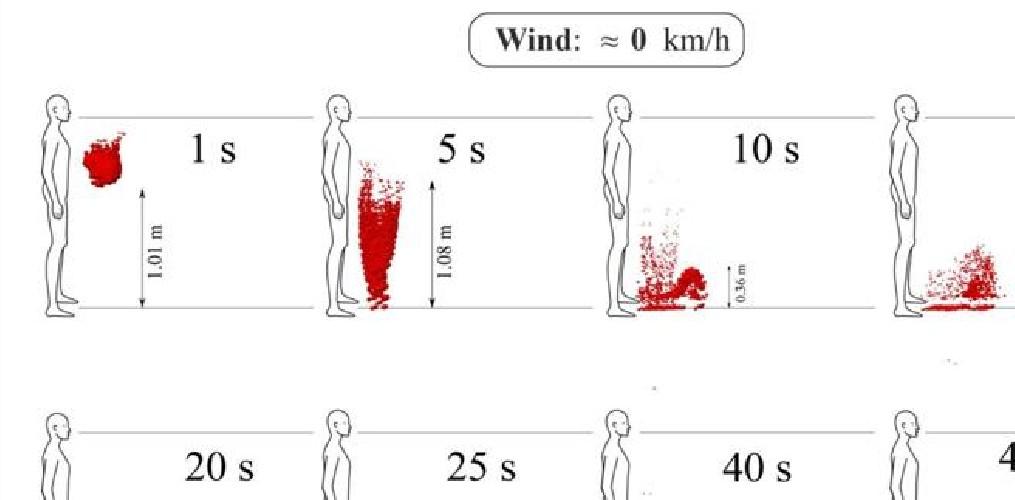 https://www.ragusanews.com//immagini_articoli/21-05-2020/virus-se-c-e-vento-un-metro-di-distanza-e-insufficiente-500.jpg