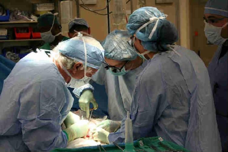https://www.ragusanews.com//immagini_articoli/21-06-2020/prelievo-multiorgani-da-giovane-donatore-donati-fegato-e-reni-500.jpg