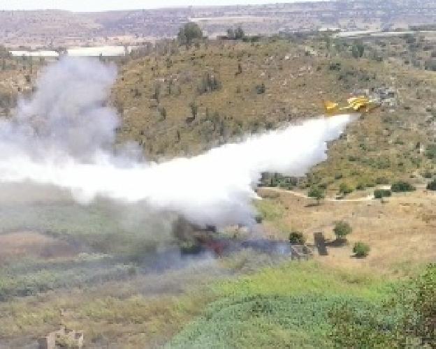 https://www.ragusanews.com//immagini_articoli/21-07-2014/grande-incendio-nella-valle-dell-ippari-500.jpg