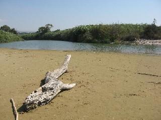 https://www.ragusanews.com//immagini_articoli/21-09-2020/si-ricostruiscono-le-dune-della-riserva-dell-irminio-240.jpg