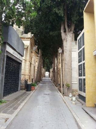 http://www.ragusanews.com//immagini_articoli/21-12-2016/privatizzazione-cimitero-di-comiso-il-no-dei-cinque-stelle-420.jpg
