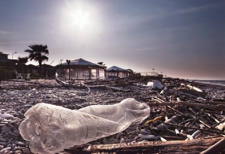 http://www.ragusanews.com//immagini_articoli/22-02-2014/rifiuti-in-spiaggia-le-domande-di-fare-verde-vittoria-500.jpg