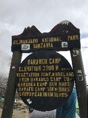 https://www.ragusanews.com//immagini_articoli/22-02-2020/1582373115-sylvana-e-salvatore-la-nostra-africa-2-240.jpg