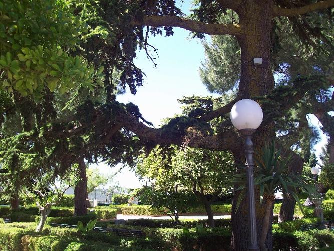 http://www.ragusanews.com//immagini_articoli/22-05-2015/a-chiaramonte-ci-si-sposa-in-giardino-500.jpg