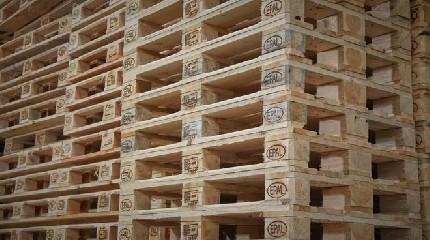 https://www.ragusanews.com//immagini_articoli/22-07-2020/imballaggi-in-legno-fatture-false-per-4-milioni-di-euro-240.jpg