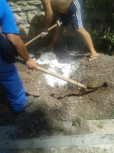 https://www.ragusanews.com//immagini_articoli/22-08-2015/il-cane-ettore-e-stato-seppellito-a-villa-mormino-500.jpg