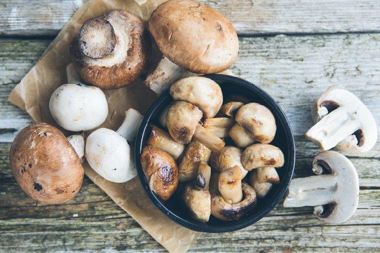 https://www.ragusanews.com//immagini_articoli/22-08-2019/dieta-dei-funghi-pro-e-funziona-500.jpg