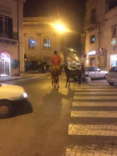 https://www.ragusanews.com//immagini_articoli/22-11-2015/l-uomo-con-due-cavalli-500.jpg