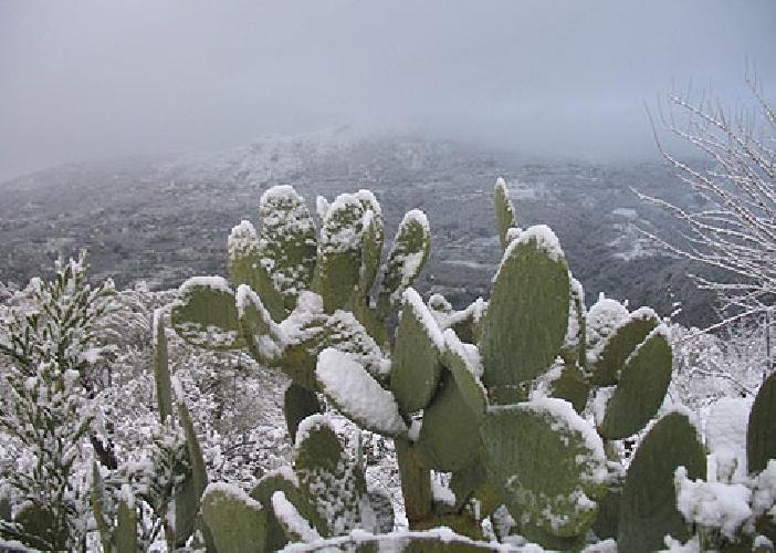 https://www.ragusanews.com//immagini_articoli/22-12-2014/turismo-sicilia-e-sardegna-ai-primi-posti-anche-in-inverno-500.jpg