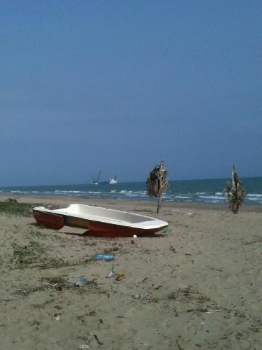 http://www.ragusanews.com//immagini_articoli/23-02-2014/quella-nave-che-preleva-sabbia-500.jpg