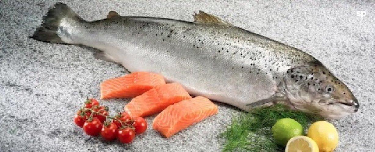 https://www.ragusanews.com//immagini_articoli/23-05-2019/la-corretta-alimentazione-il-colesterolo-500.jpg