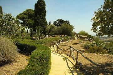 https://www.ragusanews.com//immagini_articoli/23-08-2019/1566560478-il-giardino-mediterraneo-di-villa-aurea-valle-dei-templi-1-240.jpg
