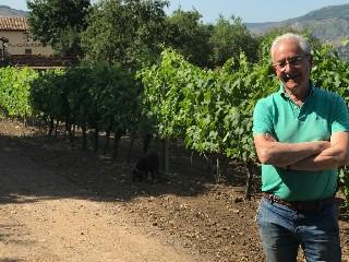 https://www.ragusanews.com//immagini_articoli/23-09-2020/1600857017-vinietna-un-oro-e-due-argenti-per-i-vini-al-cantara-al-decanter-wine-2-240.jpg