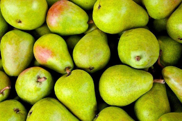 https://www.ragusanews.com//immagini_articoli/23-11-2019/pere-un-frutto-autunnale-che-ci-aiuta-a-dimagrire-500.jpg
